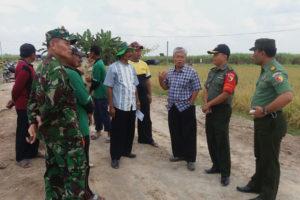 Kegiatan Tim sergap Dirjen PSP Kementan Di Wilayah  Mantingan Ngawi 5