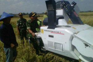 Serapan Gabah Petani Pada Panen Raya Di Wilayah Madiun  (2)