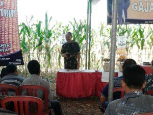 23 agustus launching jagung (10)