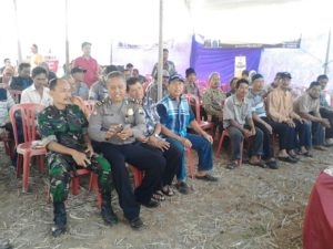 23 agustus launching jagung (3)
