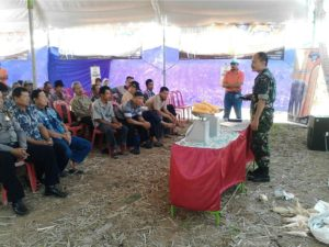 23 agustus launching jagung (8)