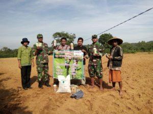 3. Babinsa Koramil Geger Bangkalan, Dampingi Petani Tanam Kedelai  1