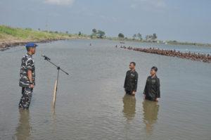 310816 SMG Stimart Amni mandi laut-2