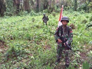 B. 08 Satgaspamtas Yonmek 516 CY Temukan Ladang Ganja Di Perbatasan RI - PNG (4)
