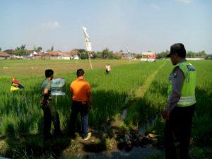 babinsa-koramil-081414-ngoro-danpingi-penyuluh-pertanian-pt-agricon-3