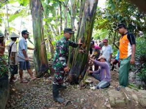 TNI DAN MASYARAKAT BAHU MEMBAHU MELAKSANAKAN MENGAWALI PRA TMMD KE 97 1