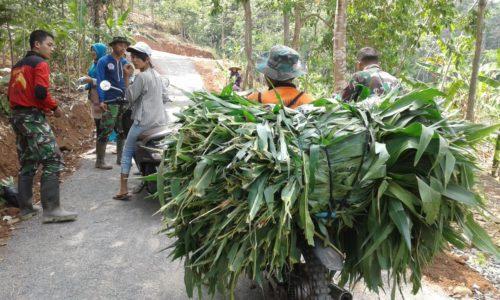 Mencari Rumput Jadi Mudah, TMMD Menjadi Berkah Bagi Warga Desa